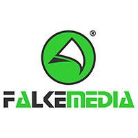 Logo FALKEmedia